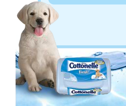 $1 off ONE Package of Cottonelle Fresh Wipes - Clever ...