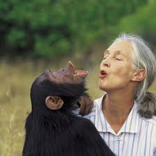 What Would YOU Ask Dr. Jane Goodall and the McClain Sisters? #MeetOscar
