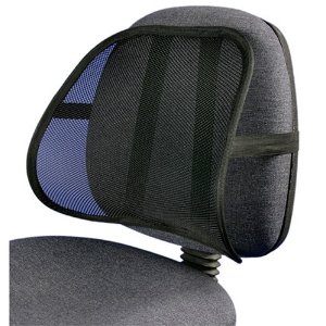 PosturePro Lumbar Support Only $2