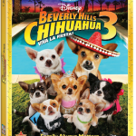 BeverlyHillsChihuahua3
