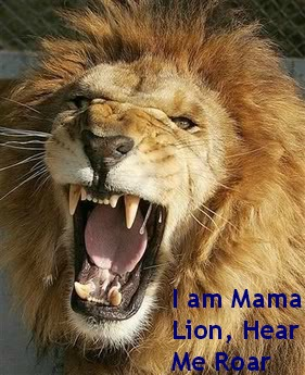 Had Enough With Bullying: I Am Mama Lion, Hear Me Roar! 