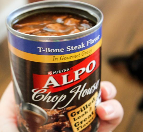 Canned Dog Food Treat Recipes
