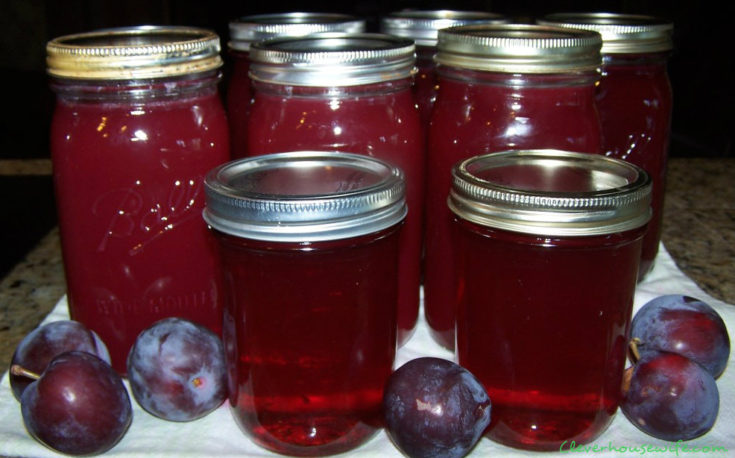 Homemade Plum Syrup