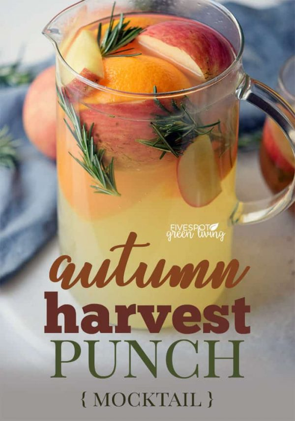 Autumn Harvest Punch Recipe from Five Spot Green Living