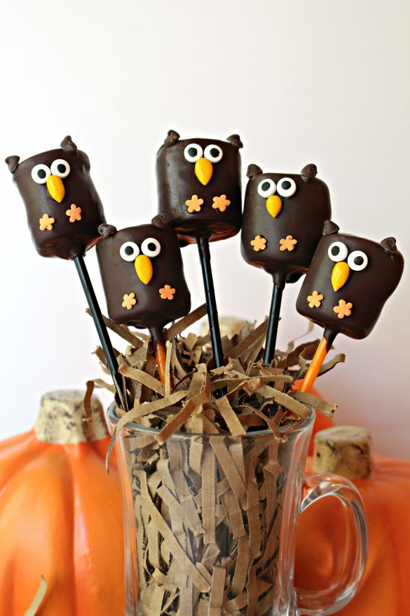 Owl Marshmallow Pops from The Monday Box