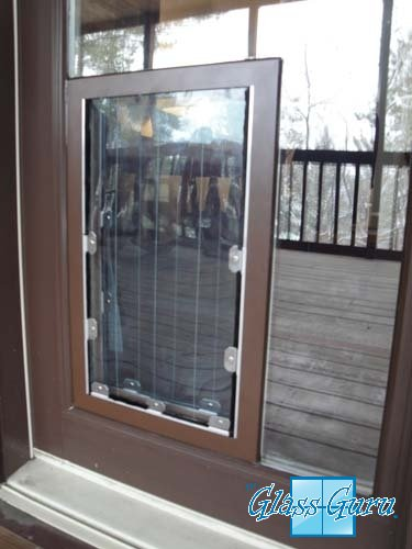 In-Glass Pet Door from The Glass Guru