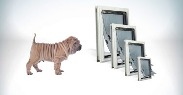 Types and Benefits of Pet Doors